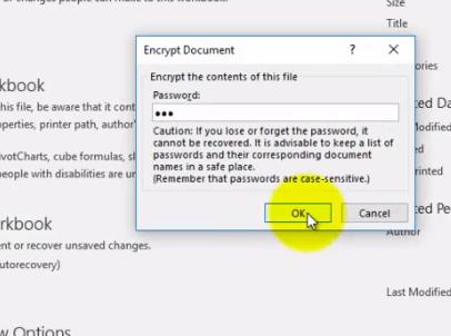 Excel Encrypt Password 2 - Dynamic Web Training