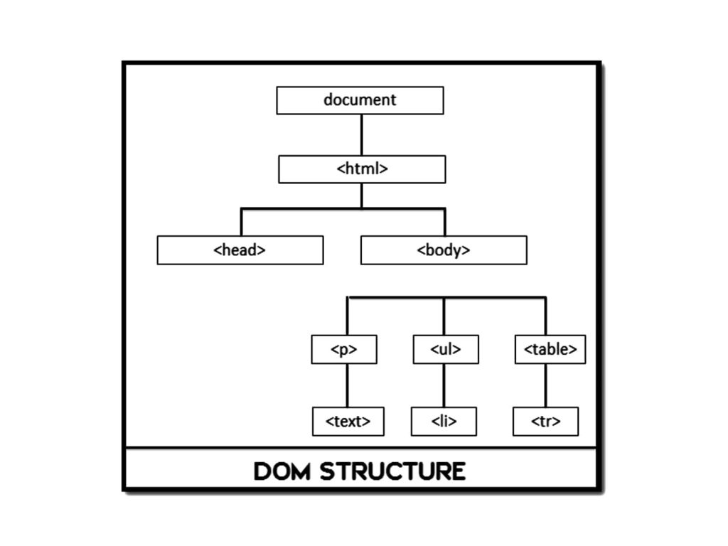 DOM Structure - Dynamic Web Training